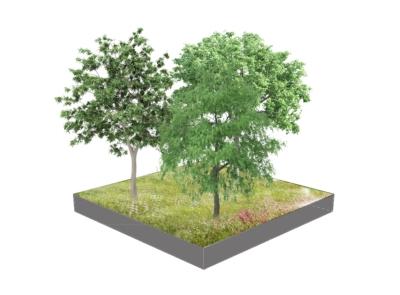 Artist impression - bomen parkstrook